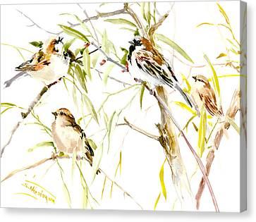 Sparrows Canvas Print by Suren Nersisyan