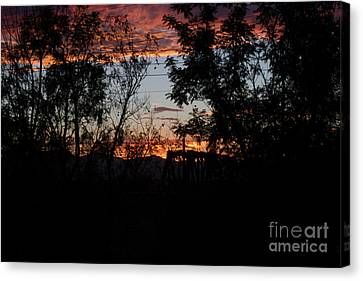 Spectacular Sky Canvas Print by Anne Rodkin