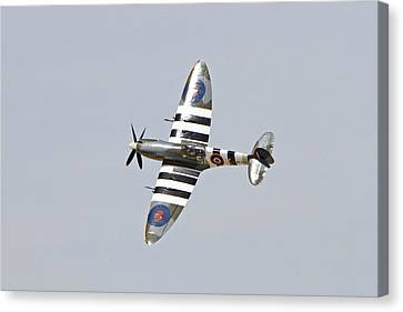 Spitfire In Flight Canvas Print by Shoal Hollingsworth