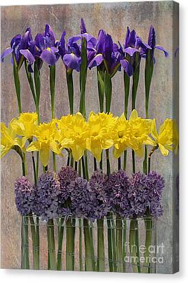 Spring Delights Canvas Print by Nina Silver