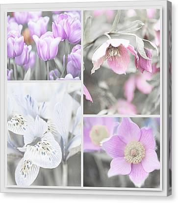 Spring Flower Collage. Shabby Chic Collection Canvas Print