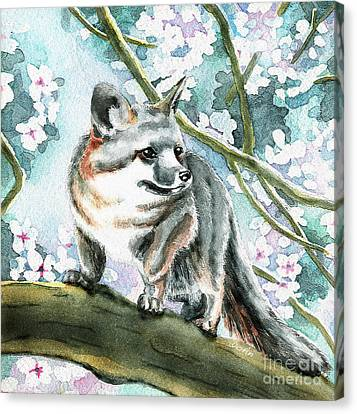 Spring Fox Canvas Print by Antony Galbraith