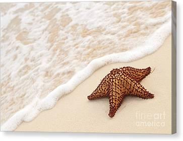 Shore Canvas Print - Starfish And Ocean Wave by Elena Elisseeva