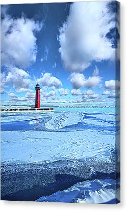 Canvas Print featuring the photograph Steadfast by Phil Koch