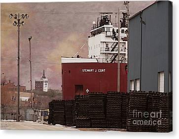 Stewart J Cort Canvas Print