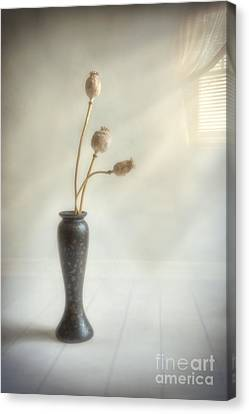 Still Life Canvas Print by Veikko Suikkanen