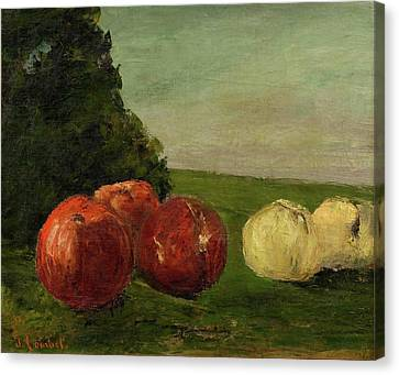 Still Life With Apples Canvas Print by Courbet
