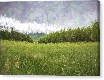 Stuck In The Field II Canvas Print by Jon Glaser