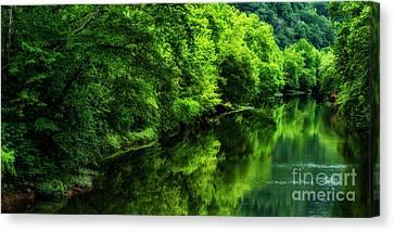 Summer Along Elk River Canvas Print