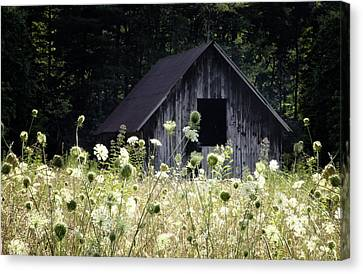 Old Barns Canvas Print - Summer Barn by Rob Travis