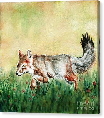 Summer Fox Canvas Print by Antony Galbraith