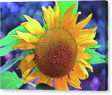 Canvas Print featuring the photograph Sunflower by Allen Beatty