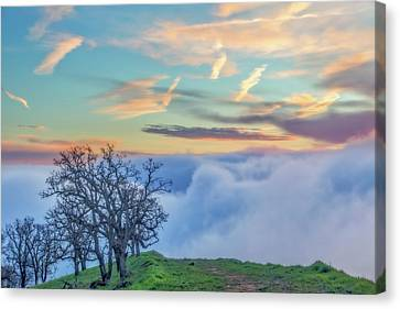 Brentwood Canvas Print - Sunrise Hike At Los Vaqueros by Marc Crumpler