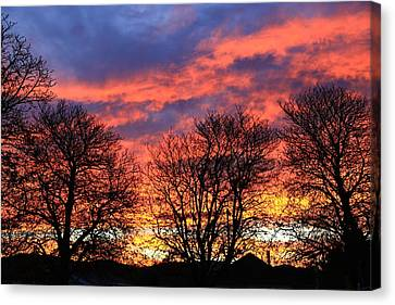 Canvas Print featuring the photograph Sunset And Filigree by Nareeta Martin