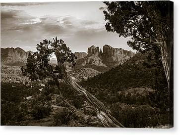 Sunset At Cathedral Rock Canvas Print