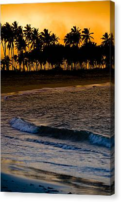 Palm Tree Canvas Print - Sunset At The Beach by Sebastian Musial
