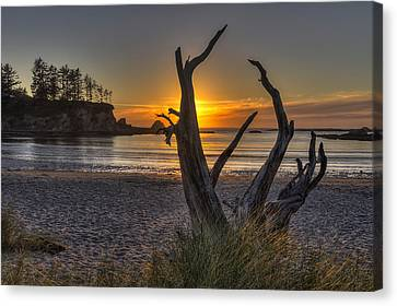 Sunset Bay Canvas Print by Mark Kiver