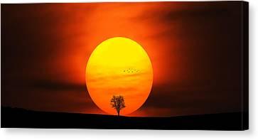 Sunset Canvas Print by Bess Hamiti
