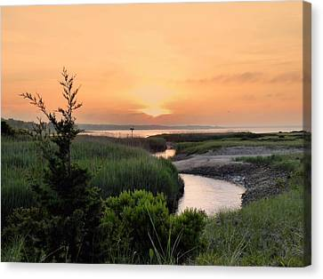 Sunset Over Marsh Canvas Print by Janice Drew