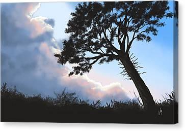 Sunset Canvas Print by Veronica Minozzi