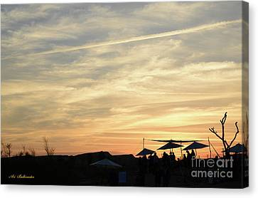 Sunset View Canvas Print by Arik Baltinester