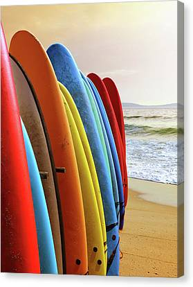 Surf Boards Canvas Print