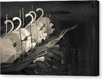 Swan Boats In A River, Boston Public Canvas Print by Panoramic Images