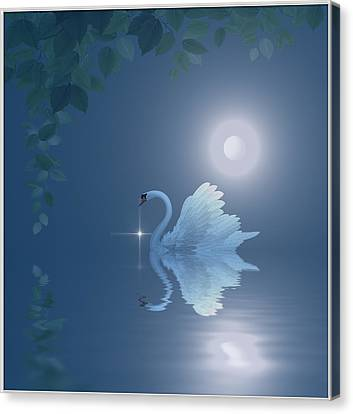 Swan Canvas Print by Harald Dastis
