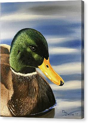 Swimming Greenhead Canvas Print