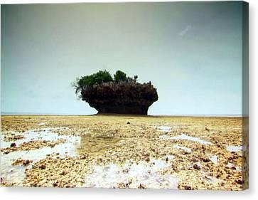 Tanzanian Island Zanzibar Coral Structures Landscape Photography Canvas Print by Navin Joshi