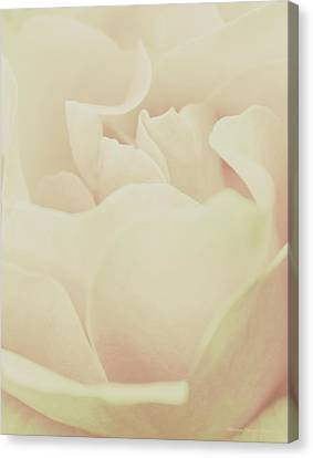 Tender Passion Canvas Print by The Art Of Marilyn Ridoutt-Greene