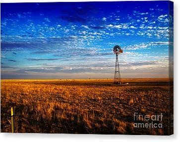 Texas Plains Windmill Canvas Print by Fred Lassmann