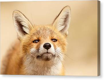 That Foxy Face Canvas Print