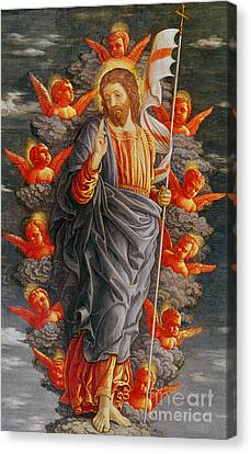 The Ascension Canvas Print by Andrea Mantegna
