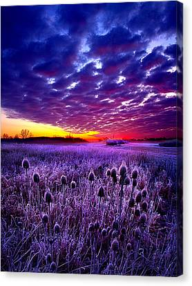 The Audience Canvas Print by Phil Koch