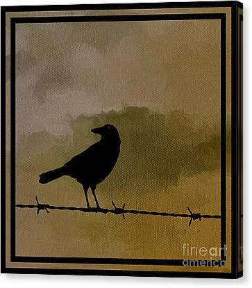 The Black Crow Knows Canvas Print by Edward Fielding