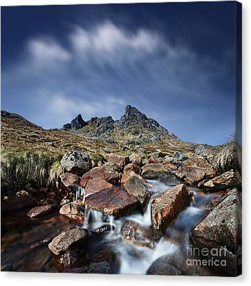 The Cobbler Canvas Print by Rod McLean