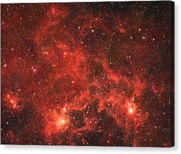 The Dragon Fish Nebula Canvas Print by American School
