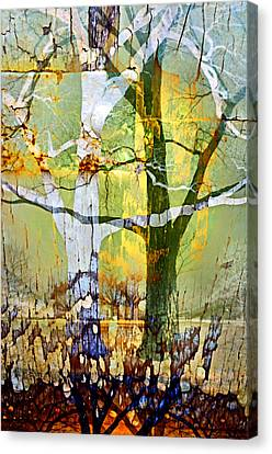 The Embrace Canvas Print by Tara Turner
