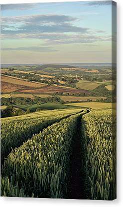 The Exe Valley Canvas Print