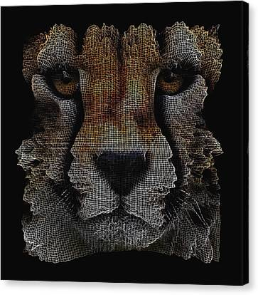 The Face Of A Cheetah Canvas Print by ISAW Gallery