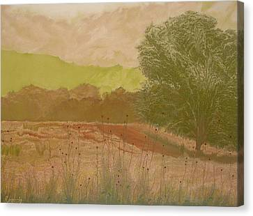 The Fog Bank Canvas Print by Harvey Rogosin