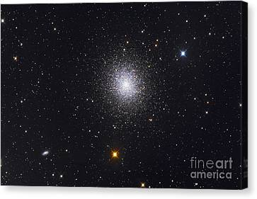 The Great Globular Cluster In Hercules Canvas Print by Roth Ritter