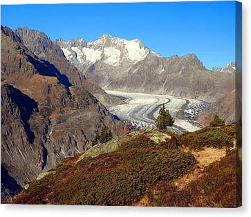 The Large Aletsch Glacier In Switzerland Canvas Print