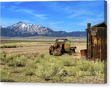 Canvas Print featuring the photograph The Old One by Robert Bales