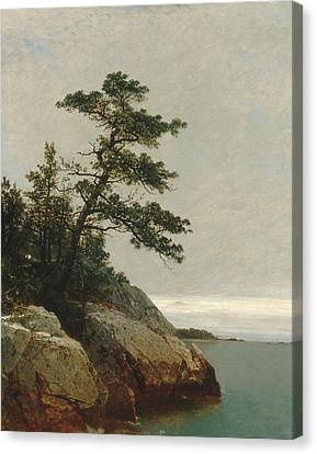 The Old Pine Darien Connecticut Canvas Print by John Frederick Kensett