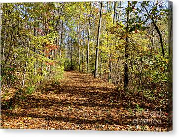 The Outlet Trail Canvas Print by William Norton