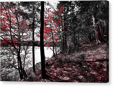 The Reds Of Autumn Canvas Print by David Patterson