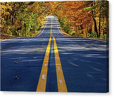 The Road Canvas Print by Phil Koch