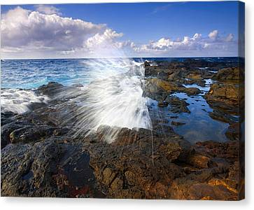 Blowhole Canvas Print - The Sea Erupts by Mike  Dawson